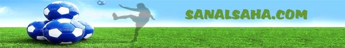 Sanal Saha Reklam